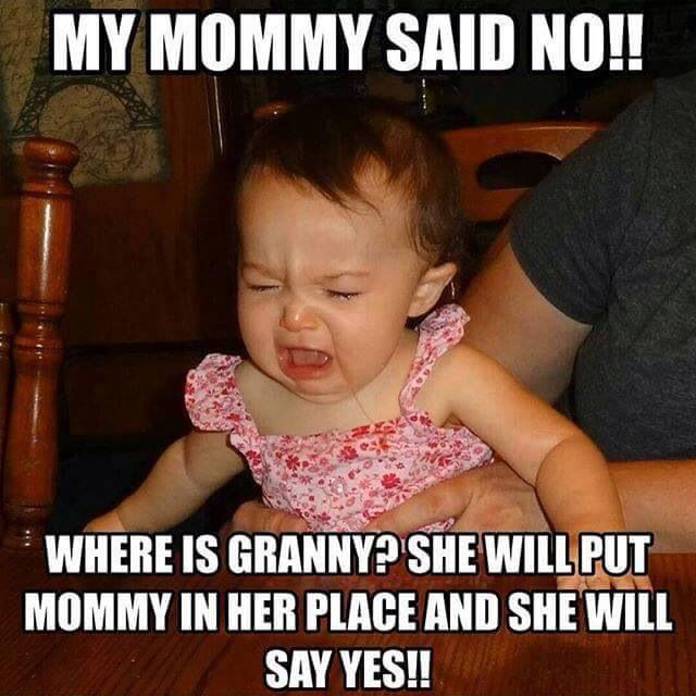 My Mommy Said No Funny Baby Quotes Baby Quotes Funny Babies