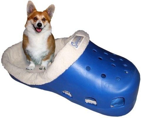 Community Post Giant Croc Dog Bed Pet Beds Pets Cool Dog Beds