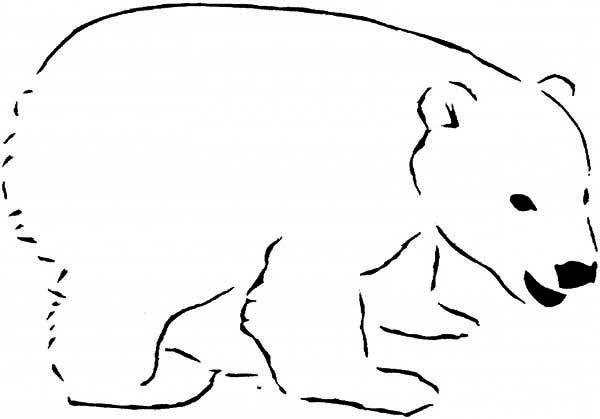 Arctic Animals Sleeping Polar Bear In Coloring Page