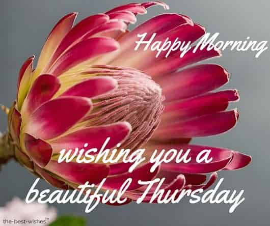 111 Good Morning Thursday Greetings Images And Wishes Good