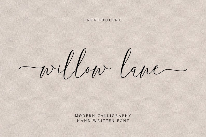 Wedding font Script Font Watercolor font Handwritten font Modern font Calligraphy font Font swirls 03 Font download Digital font