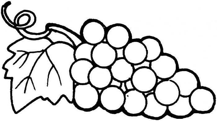 The Amazing Gorgeous Coloring Pages Grapes