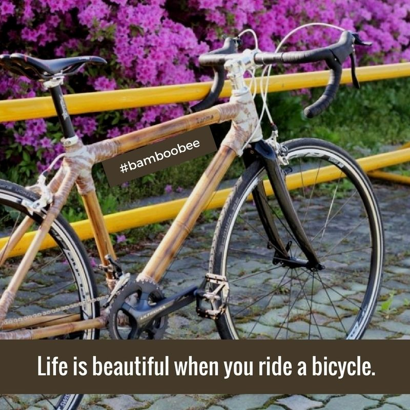 Enjoy Your Ride Build Your Own Bike Bamboo Bicycle Bike Training