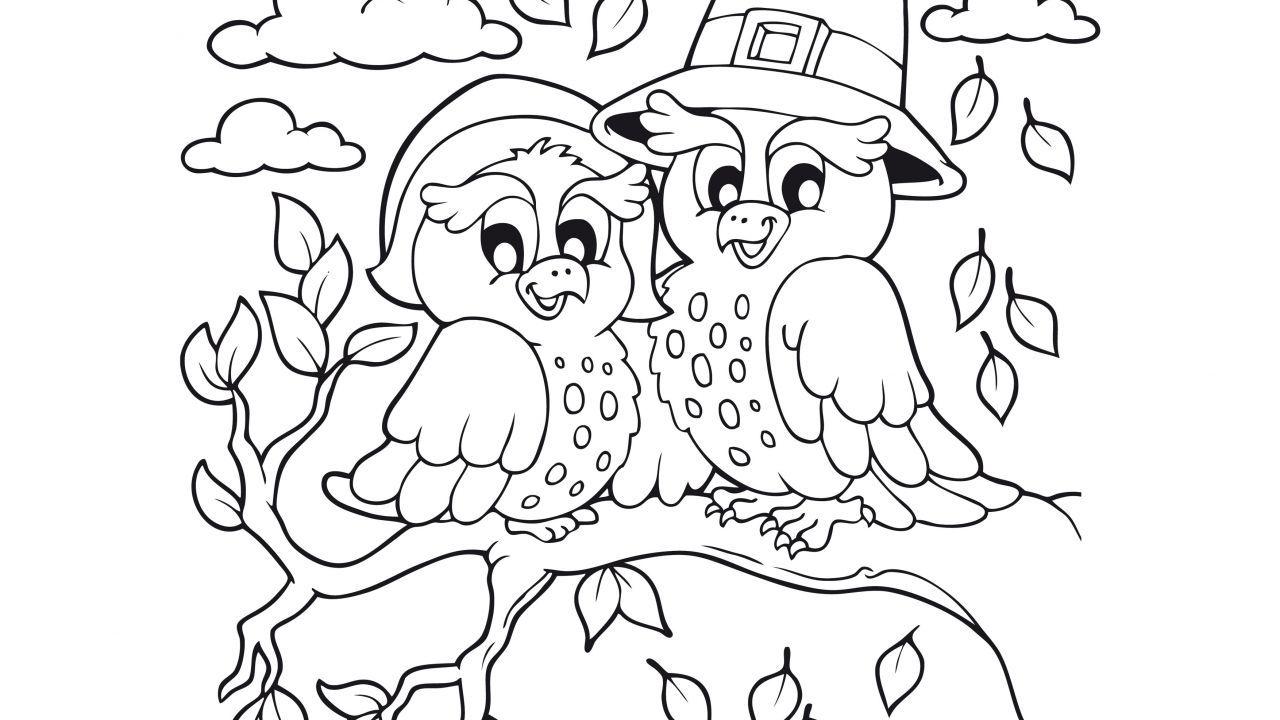 Dibujos de otoño para colorear - Búhos | Coisas para comprar ...