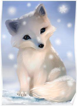 Cute arctic fox Poster