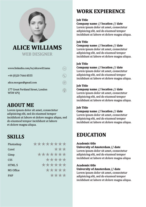 Cv Templates Doc Free 6 Templates Example Templates Example Resume Template Word Resume Template Professional Resume Template Free