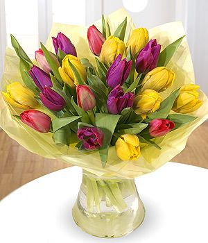Cut tulips, delivery in Vancouver.