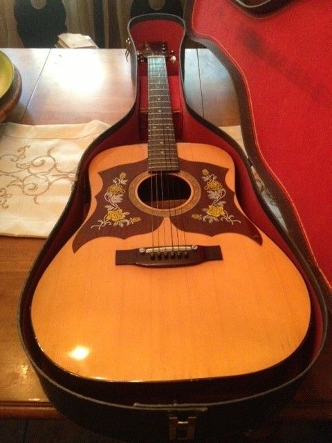 nice vintage global acoustic guitar model 4004 with case guitar collectibles guitar guitar. Black Bedroom Furniture Sets. Home Design Ideas