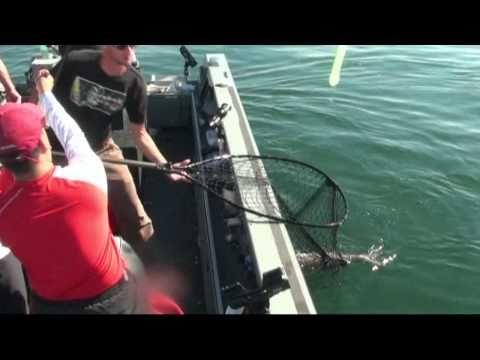 Reel Time Fishing #fish_tours #reel_time_fishing #washington_rivers #idaho_river #Fishing_Guide