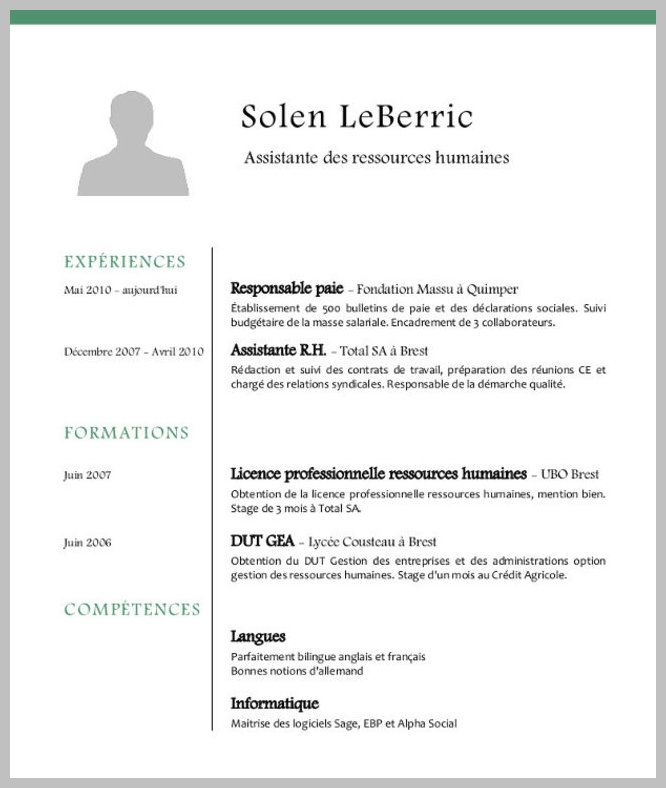 Exemple Cv Consultant Rh Resume Design Template Cv Words Free Resume Examples