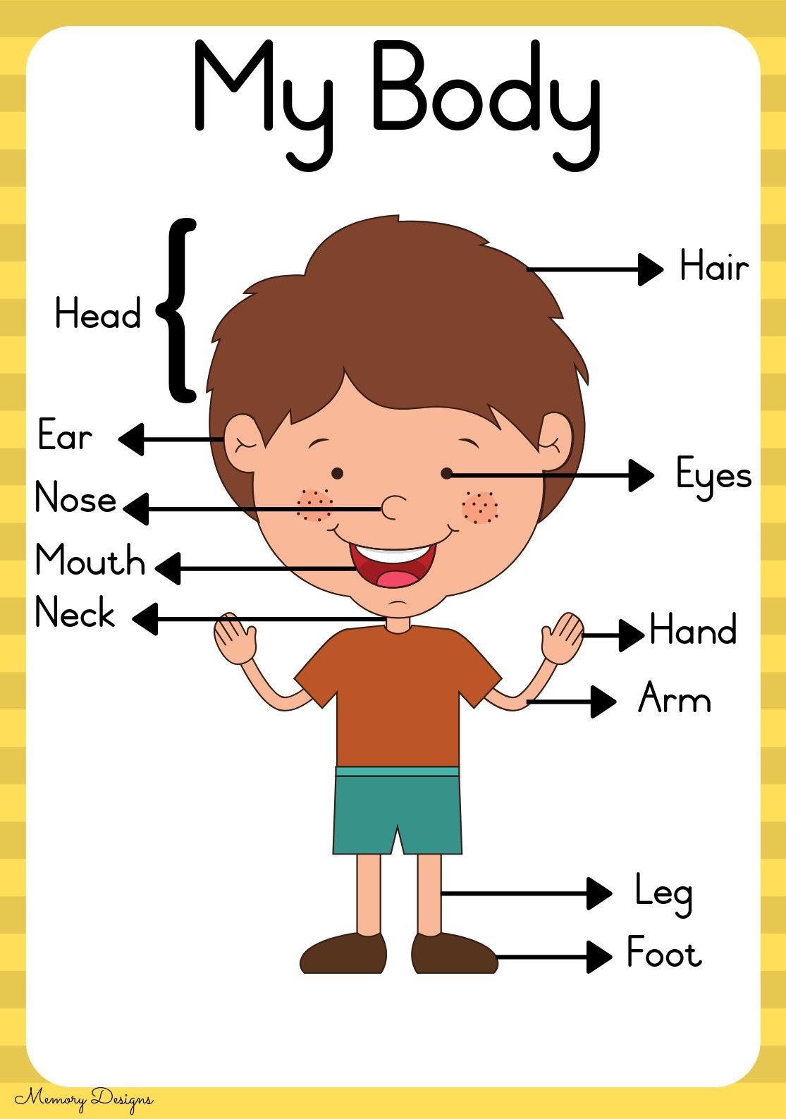 27 5 Senses Worksheets Page 001 Kids Worksheets