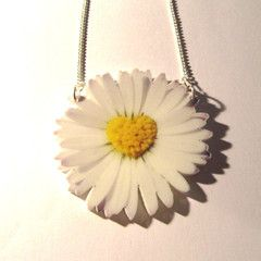 Make a flower power statement with this large and striking photo print pretty daisy pendant, with a yellow heart shaped stamens design in the centre. On a 41cm split silver plated curb chain. Measures approx 60mm x 60mm. Nickel and lead free.
