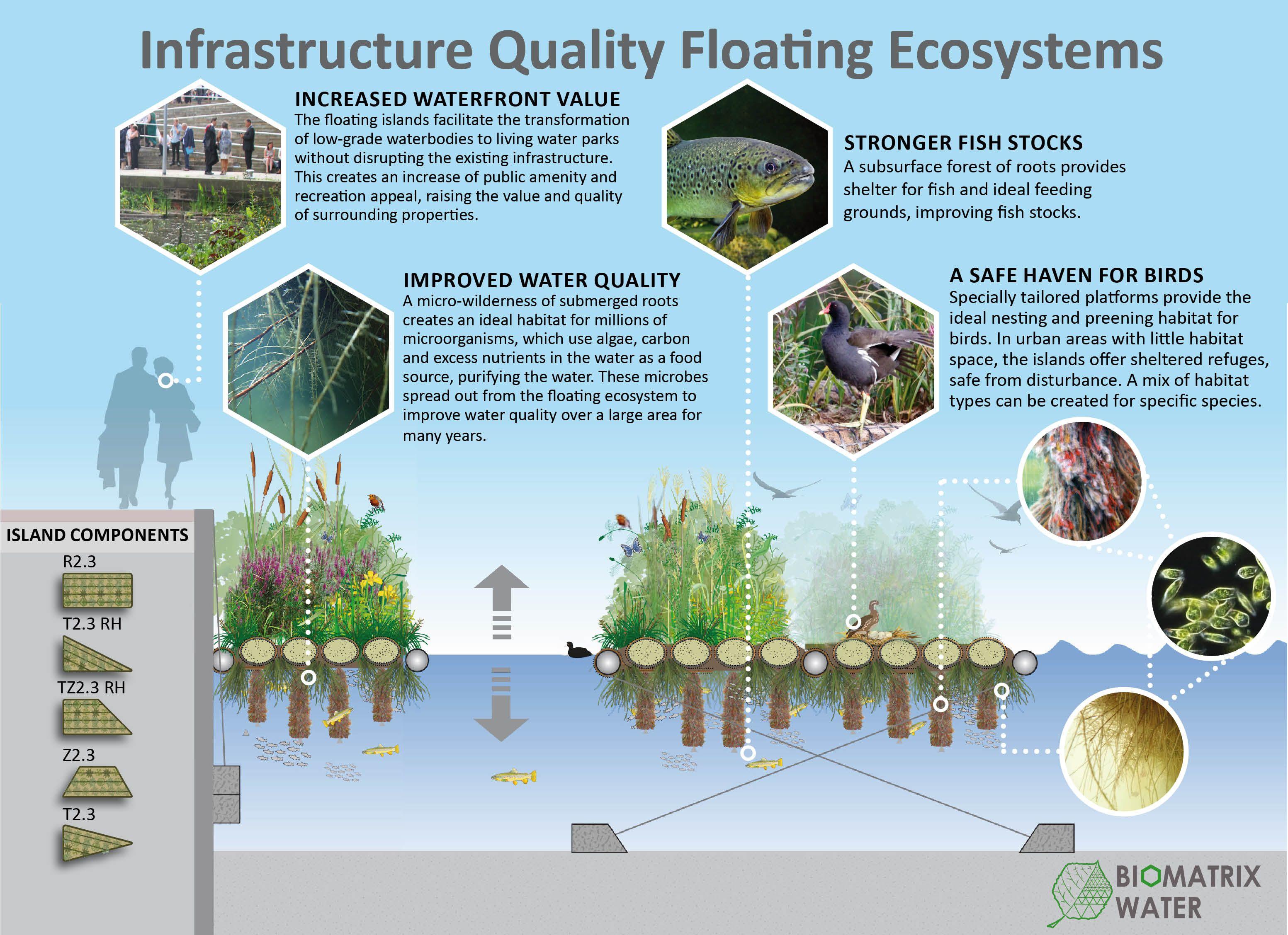 The Key Benefits Of Biomatrix Floating Ecosystems