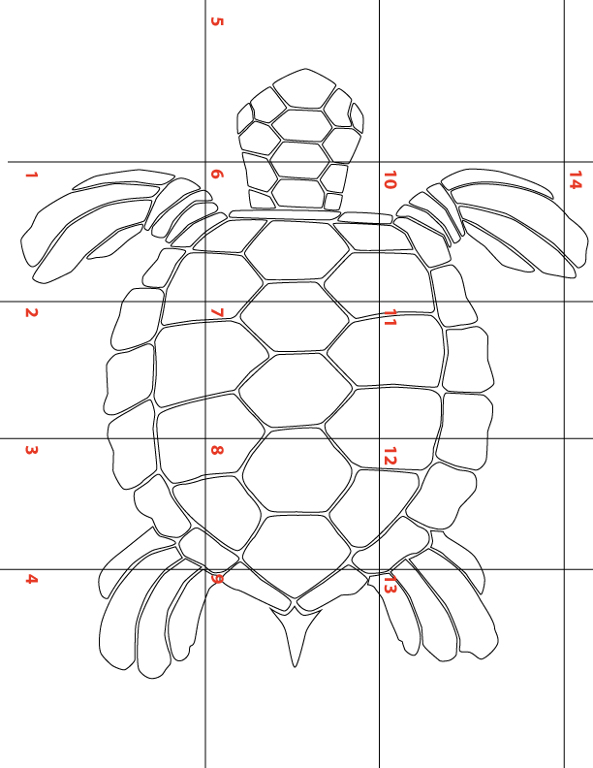 11 Name Other Large Sea Turtle Template For Lique