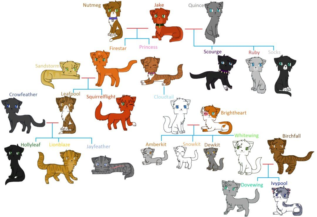 Warrior Cats Guessing Game: I Am Related To A Clan Leader I Have A