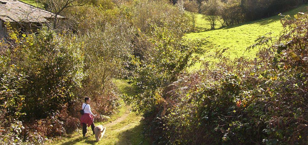 actividades_caminar_02