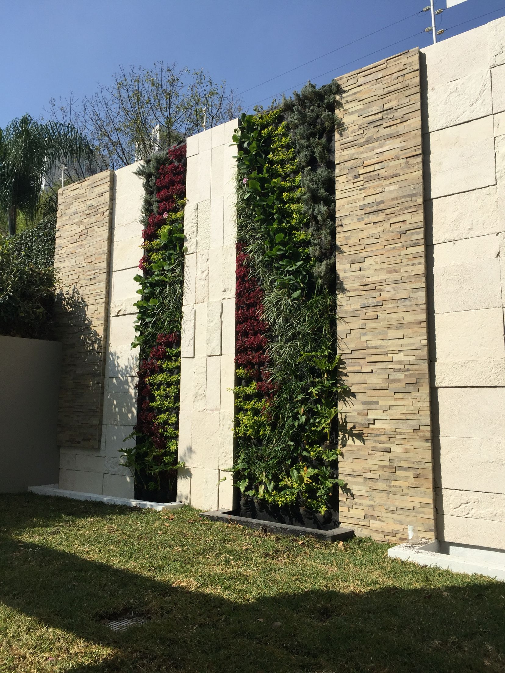 muro verde jardin vertical green wall
