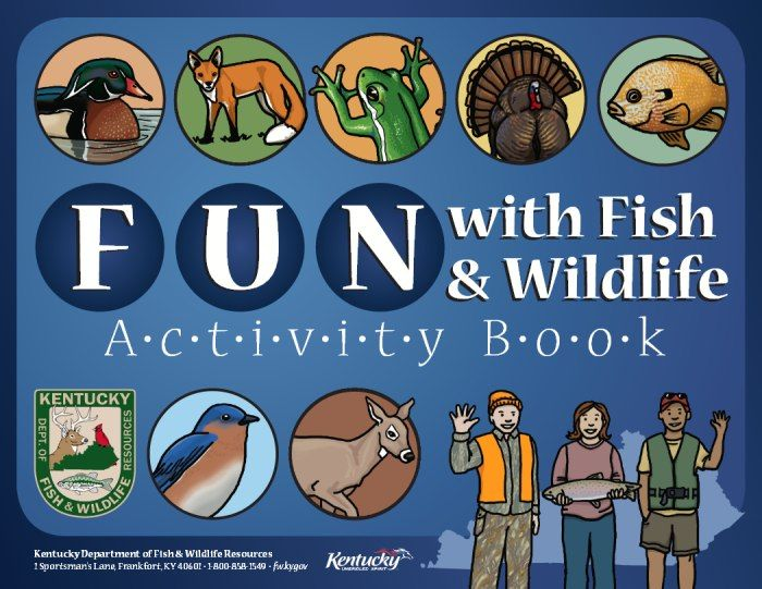 Ky Fw Links For Kids Fun With Fish And Wildlife Activity Book