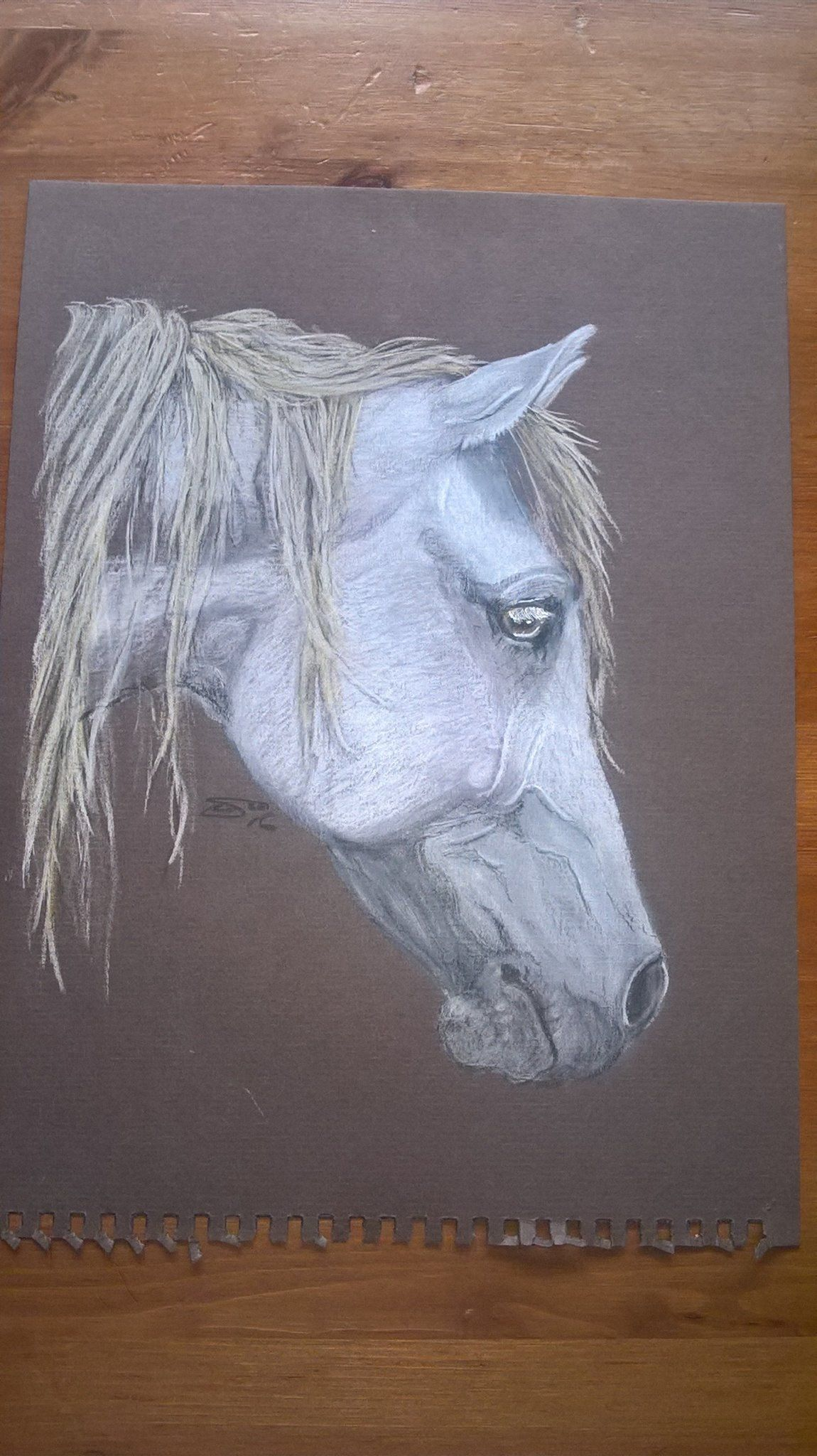 first attempt on pastel paper with colour pencils