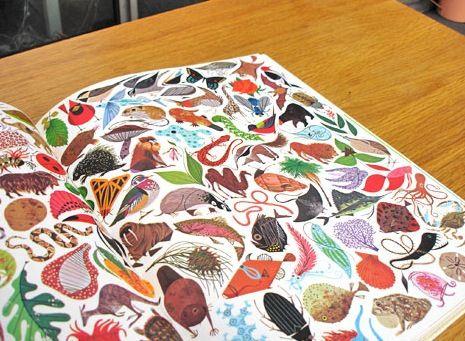 giant golden book of biology by charles harper:) @Lesley Tang, @Amanda Esther Gani
