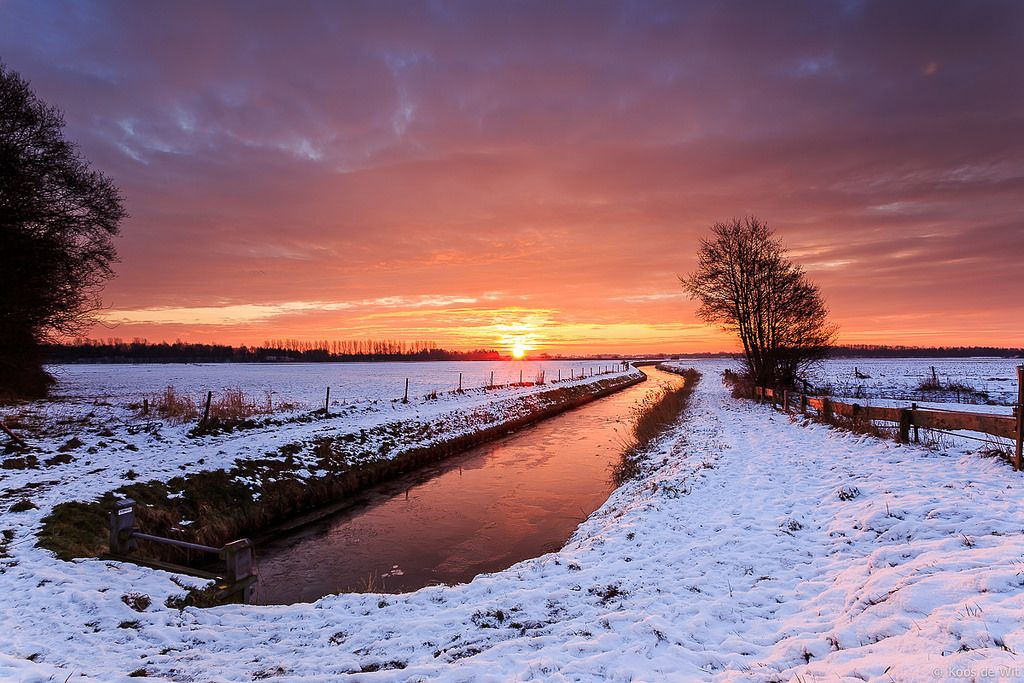 https://flic.kr/p/CUD72j   Sunrise in the snow   From a couple of weeks ago. Sunrise in the snow in Engelbert, my favourite nearby spot to take pictures.  Taken in Engelbert, Groningen, The Netherlands.  Thanks to everyone who takes the time to comment and/or fave.  © Koos de Wit All rights reserved. Please don't use this image without my permission. www.koosdewit.nl