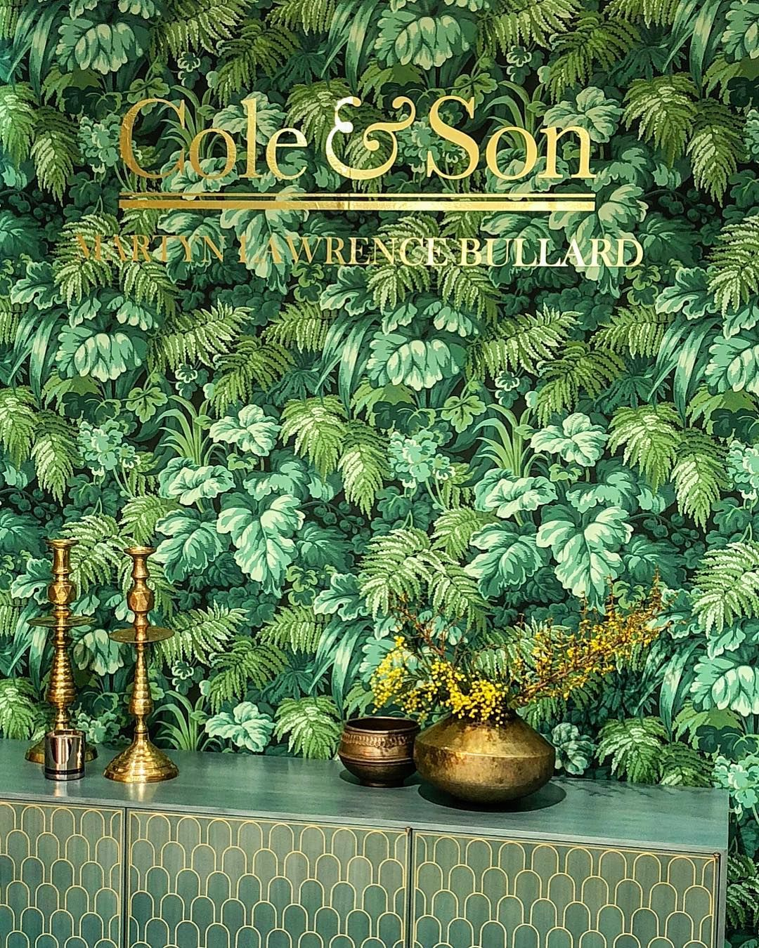 Royal Fernery One Of My New Cole And Son Wallpapers