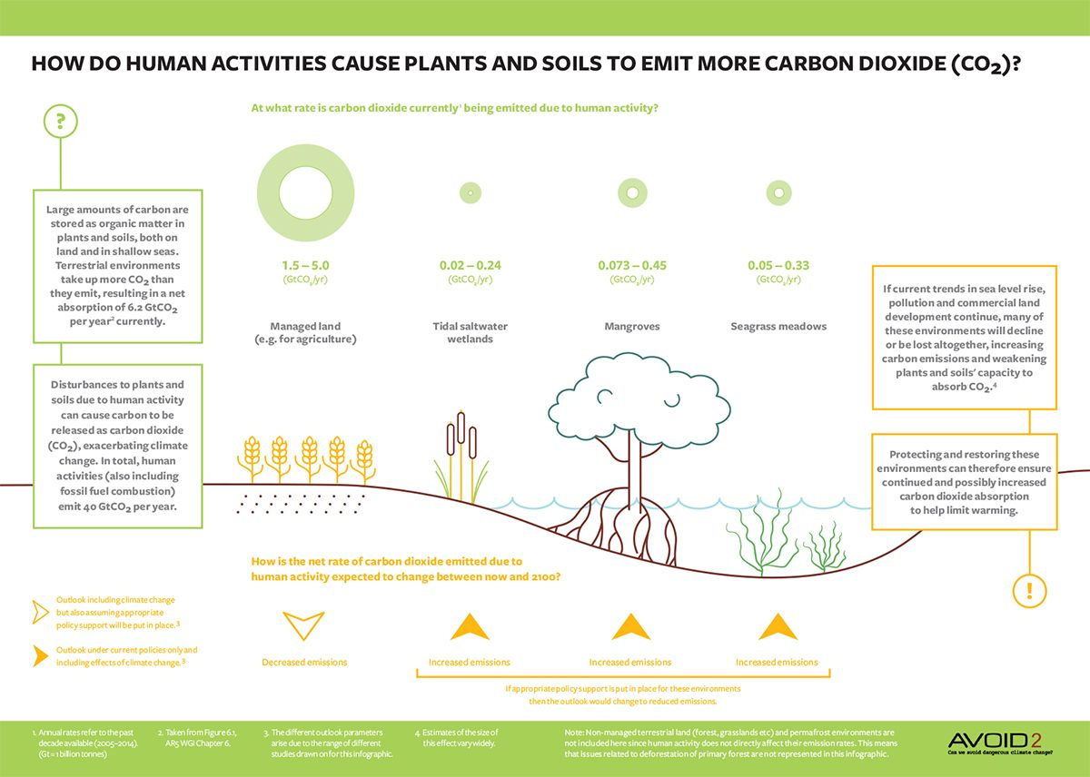 hight resolution of carbon sequestration infographic