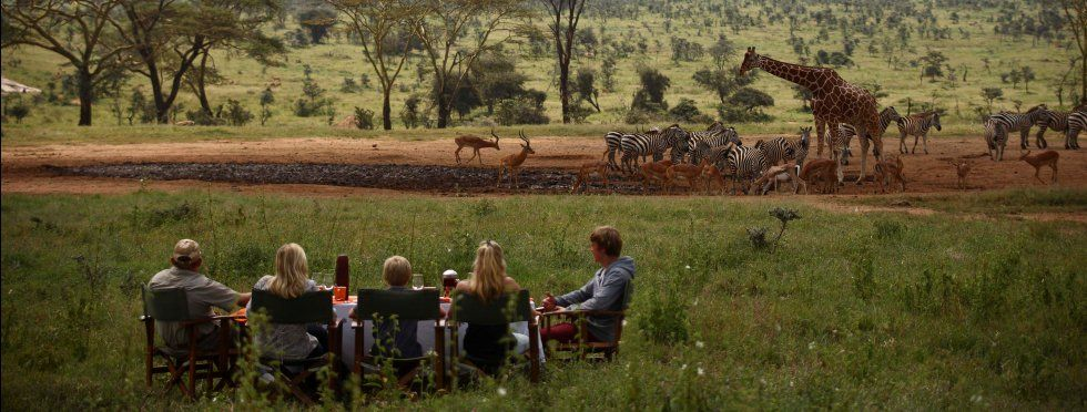 If you are thinking to spend your holiday with a memorable then #KenyaSafaris will be the best choice for you. You can have the chance to see some extraordinary wildlife here. Know more @ https://goo.gl/Ef8uov