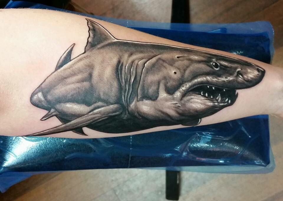 My Great white shark tattoo. Done by Scott Carlin at The Gallery of Living Art in Lansdale, PA. #greatwhite #shark #girlswithtattoos #inked