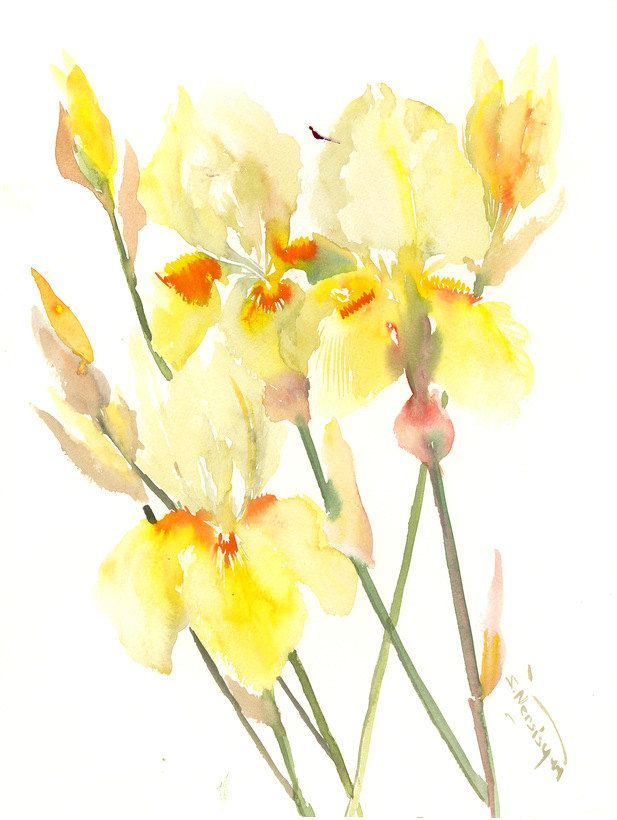 Yellow Floral Artworm, Irises, 15 x 12 in, yellow wall art, yellow ...