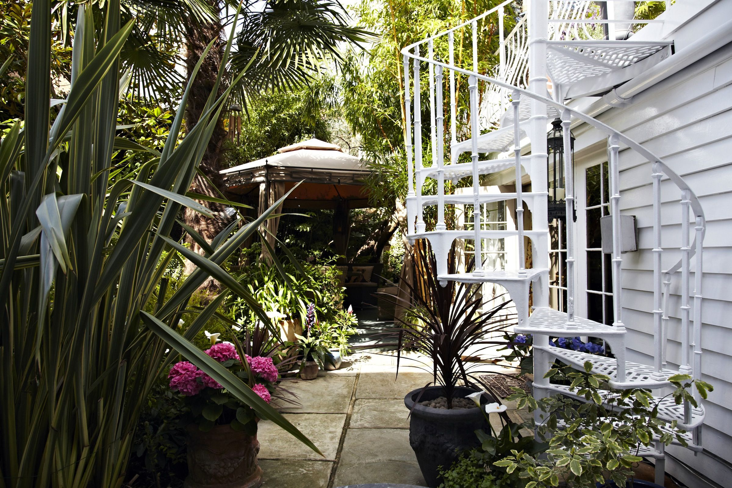Tropical london location house