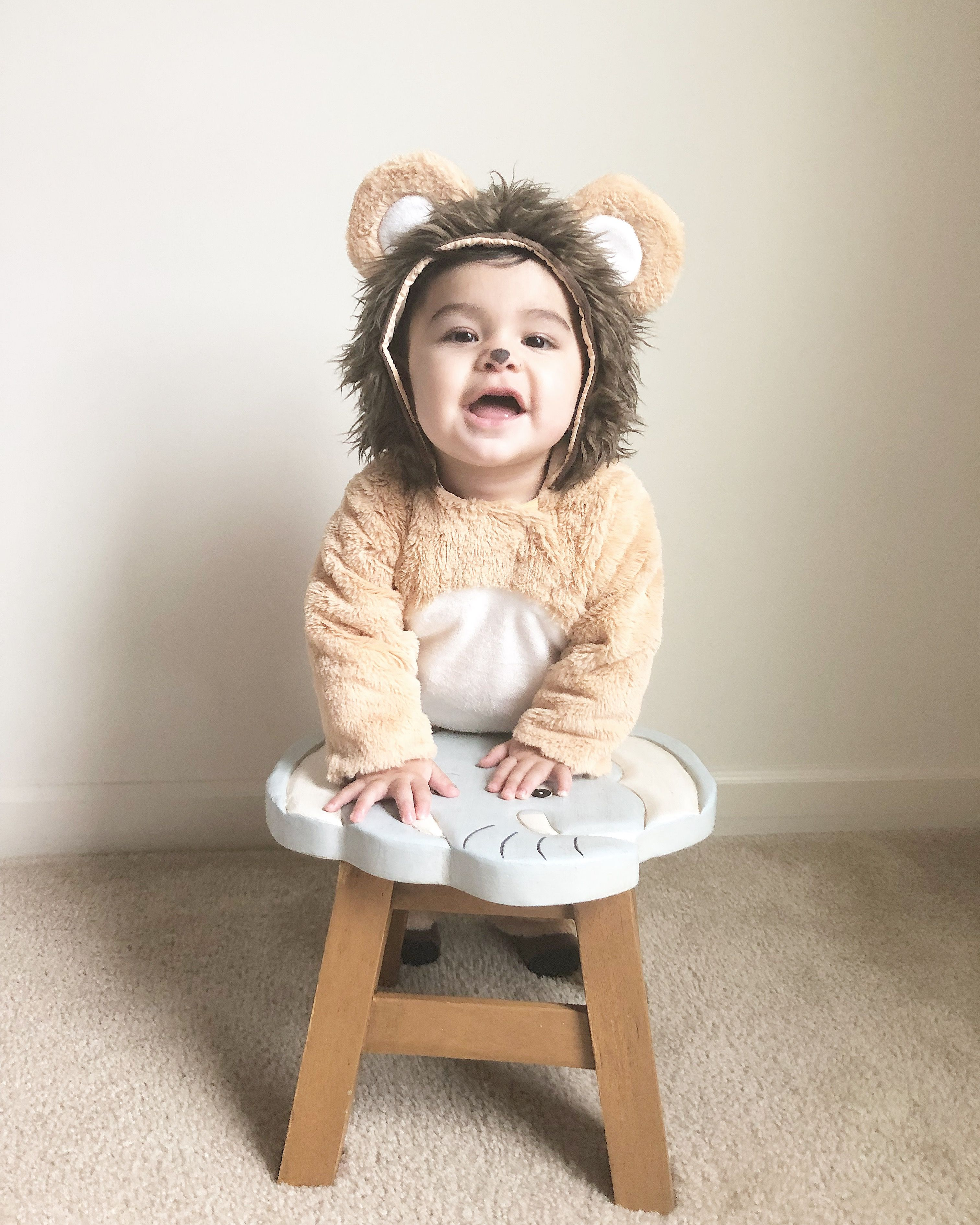 Baby lion costume/ potterybarn kids costume/baby's first