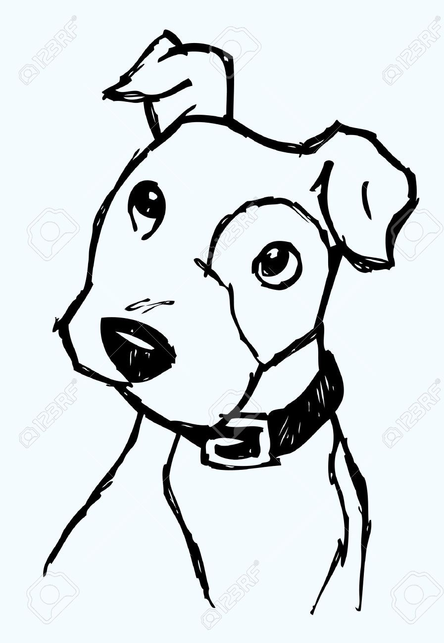 Dog Face Drawing : drawing, 7558885-Puppy-Face-Sketch-Stock-Vector-dog-cartoon.jpg, 897×1,300, Pixels, Sketch,, Drawing,, Puppy, Sketch