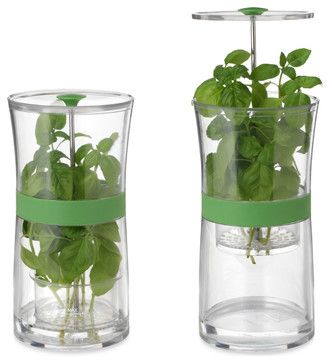 Herb Keeper - contemporary - food containers and storage - UncommonGoods