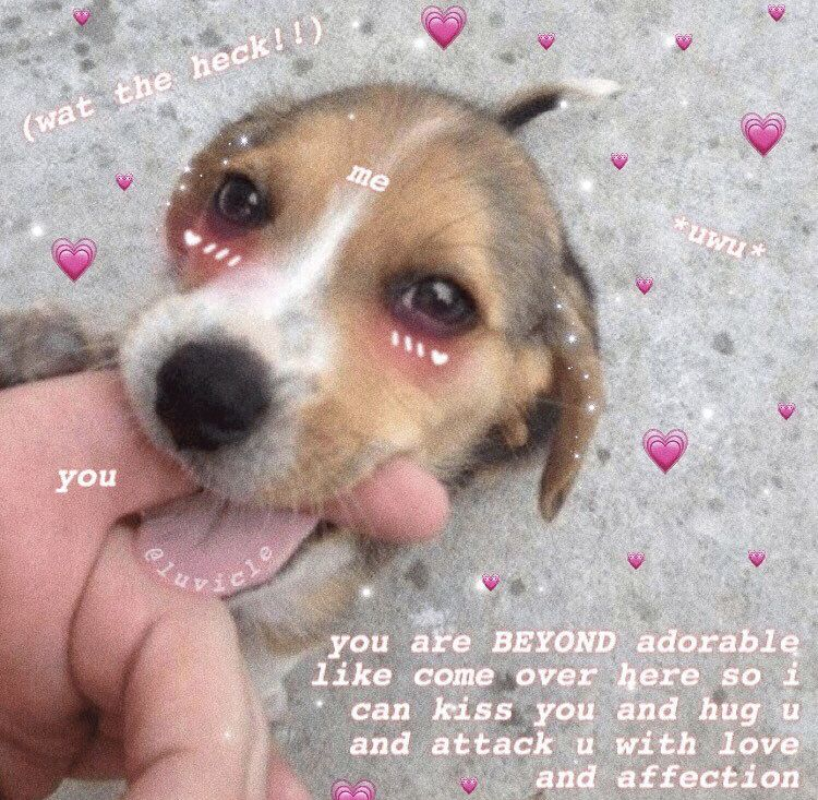 You Are Beautiful Wholesome Meme