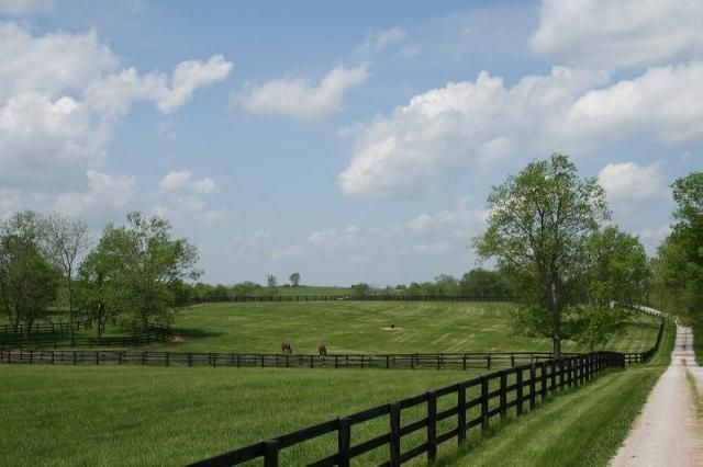 KY thoroughbred horse farm