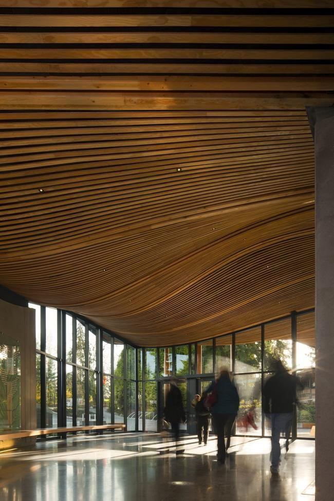 Estructura de Madera Jardín Botánico