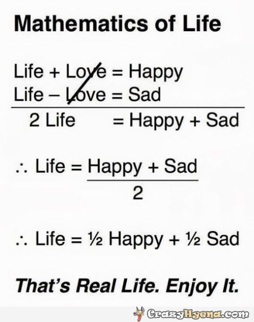 Funny equation of life, happiness and sadness | Daily Dose of ...