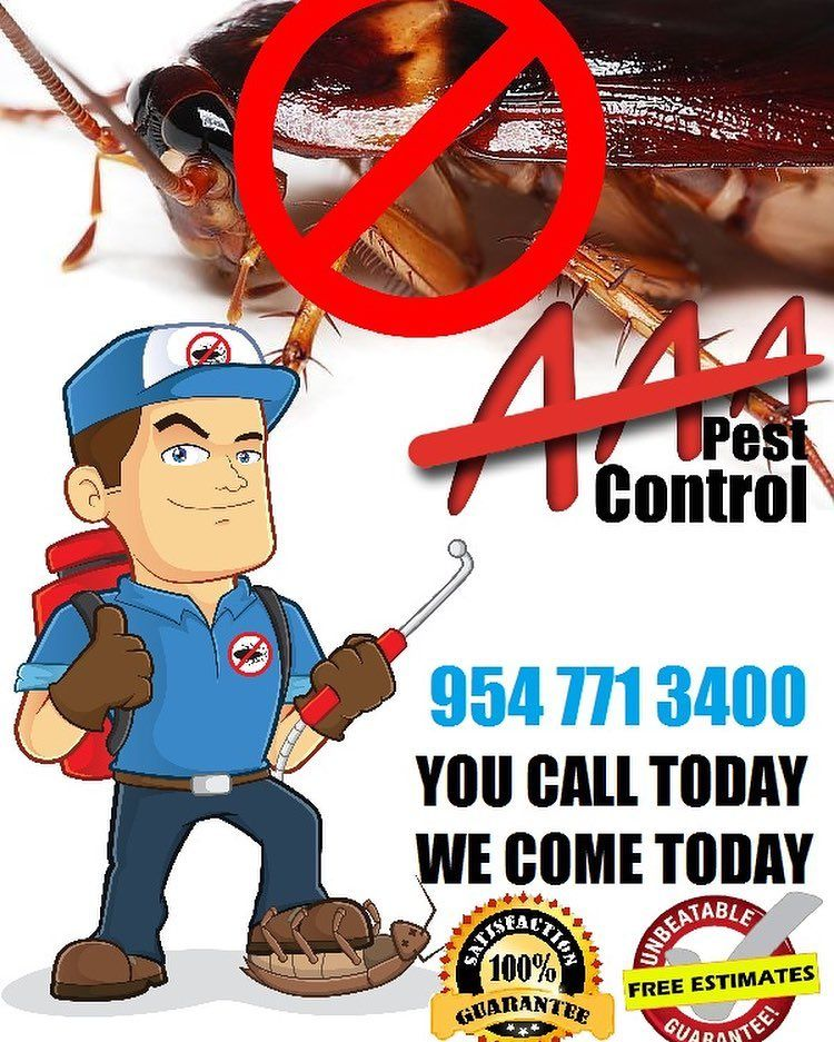 Pin by AAA Pest Control on Pest Control Pest control