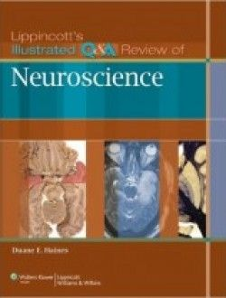 Lippincott S Illustrated Q A Review Of Neuroscience Pdf Download