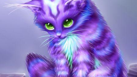 Fantasy kitty coat purple cat eyes abstract HD Wallpaper ...