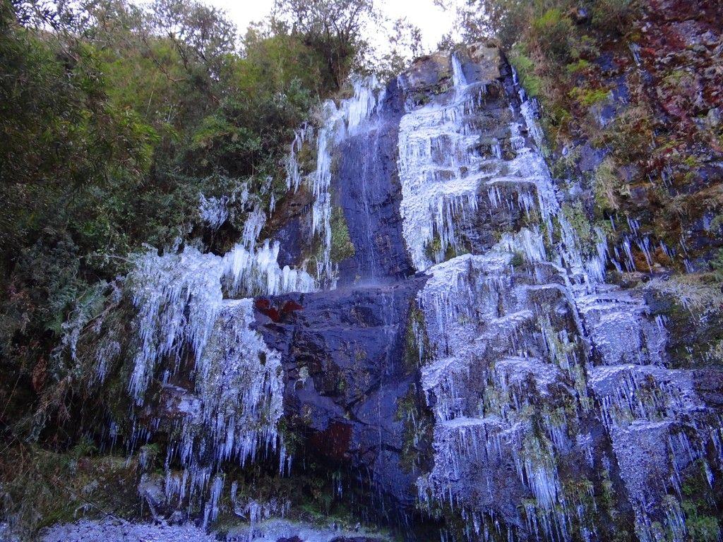 Urupema Santa Catarina fonte: i.pinimg.com