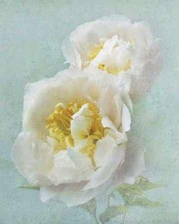 Cuadro Aqua Floral III