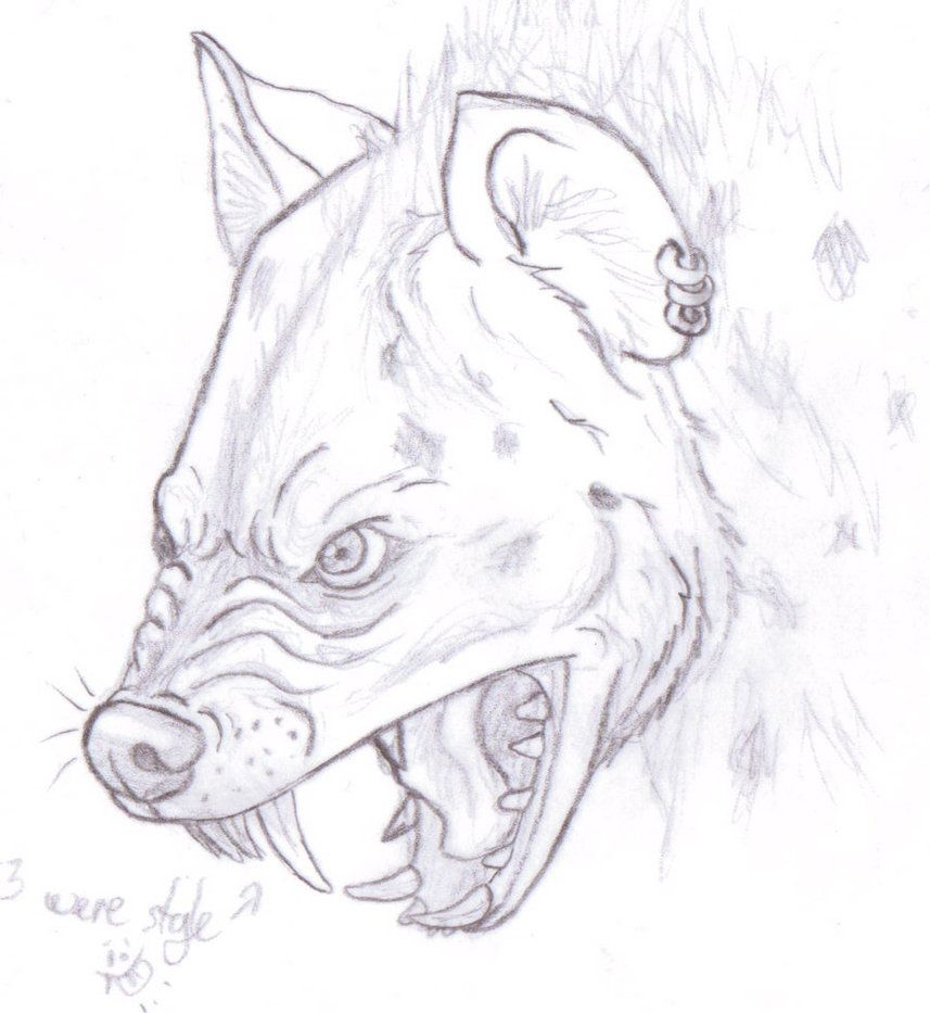 spotted hyena were sketch please do not heavily critique this as i know its scratchy im just trying to improve my were creature drawing abilities