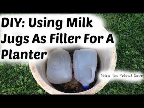 Diy Gardening Use Milk Jugs As Filler For A Large Planter Queenbeeingqueenbeeing Milk Jug Jugs Large Planters