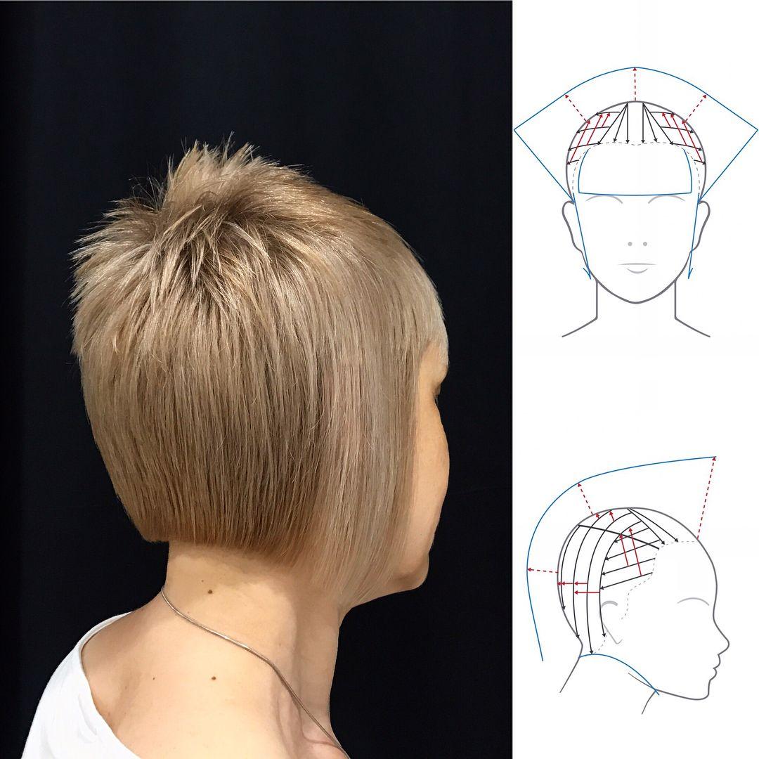 Hair Cutting Diagram on