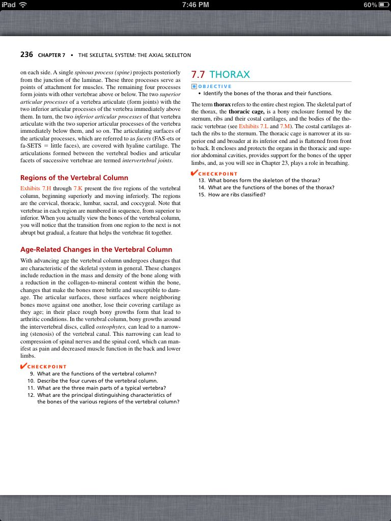 Erfreut Anatomy And Physiology Chapter 7 Skeletal System Bilder ...