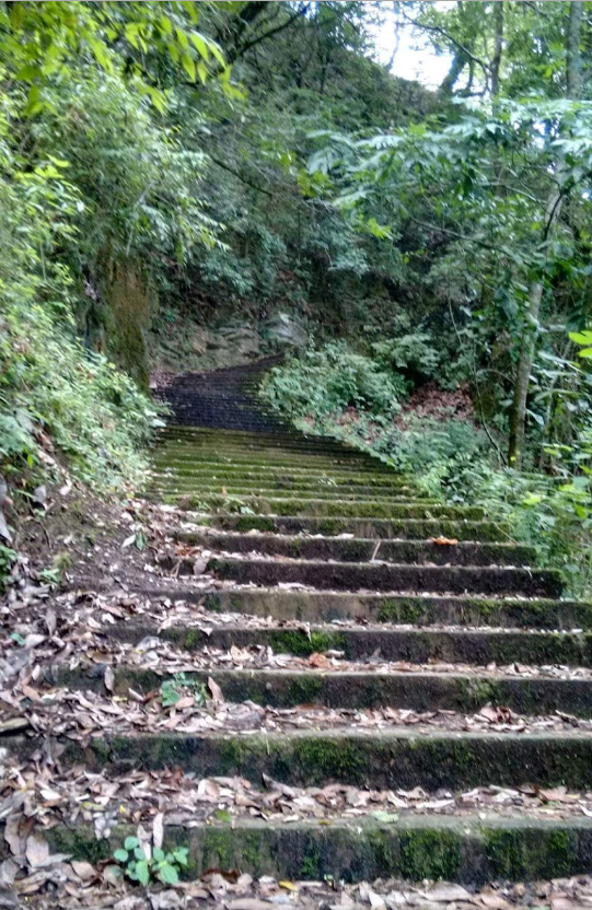 there are 309 steps to get to Cascada El Salto