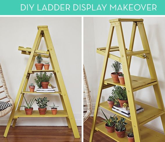 How To Turn A Ladder Into Colorful Plant Stand Or Bookshelf Wonder If I Could Do This Outside