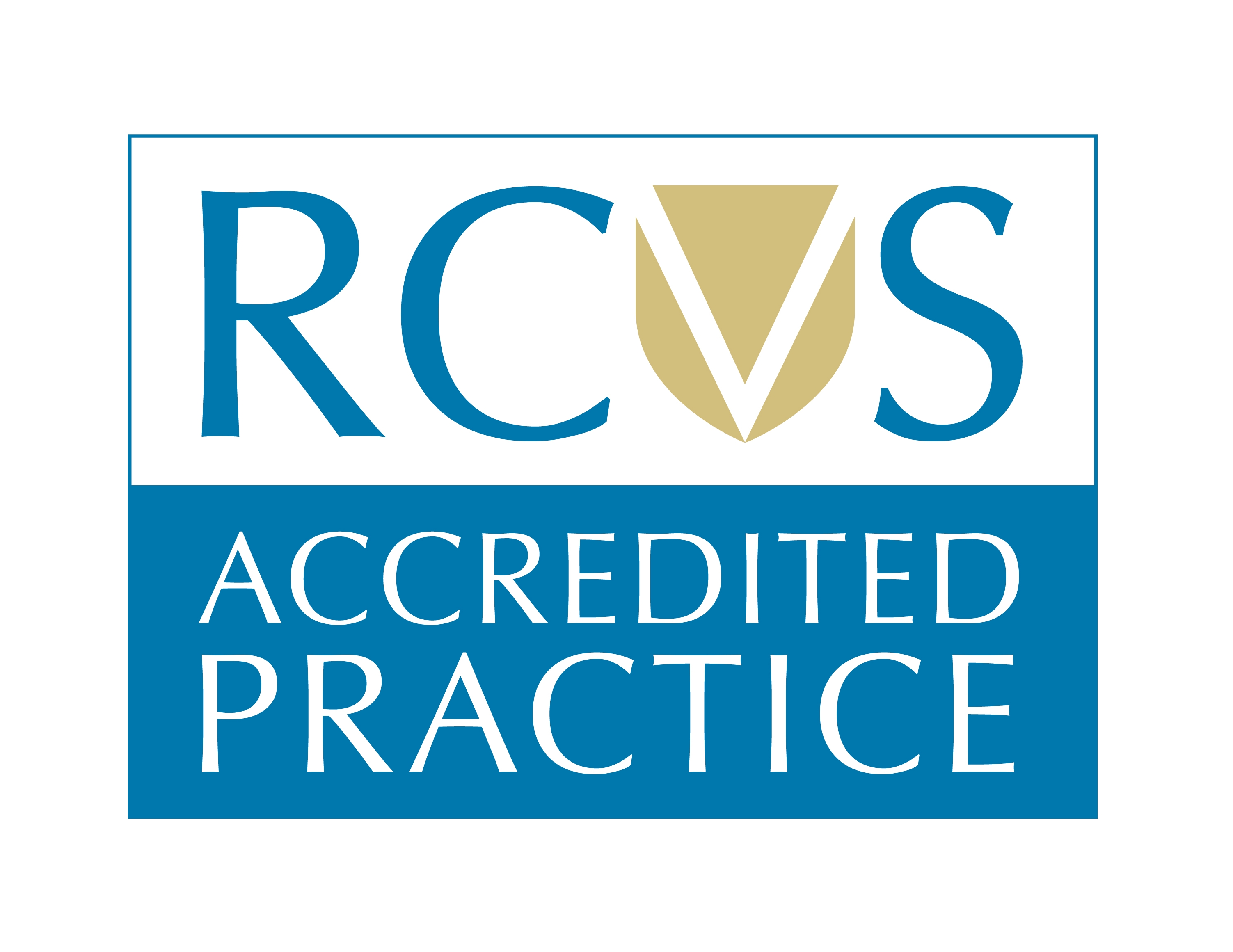 Vets Now Rcvs Accredited Emergency Vet Clinic Emergency Vet Emergency Vet Clinic Emergency Care
